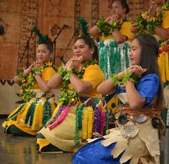Pasifika (Peter Jennings 19 Million+ views) Tags: park new festival hawaii polynesia islands state cook peter auckland zealand springs nz western maori aotearoa aloha tonga jennings aroha oceania 2014 pasifika