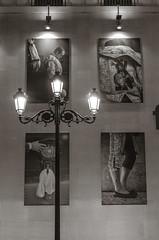 Sevilla, Dtails (JSEBOUVI : 2 millions views !) Tags: street city light horse detail cheval photo sevilla flickr foto andalucia rua soire soir espagne bouvier sville ville lampadaire andalousie arne photographe dtails tauromachie tumblr society6 sbastienbouvier 28fvrier2014
