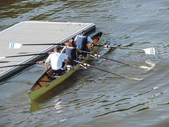 Frankfurt - Main (Anita Pravits) Tags: river germany deutschland town riverside frankfurt main stadt rowboat ufer goethe rowingboat oarsmen ruderboot ruderer flus flusufer