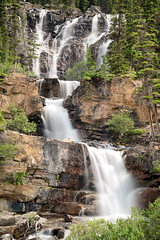 Tangled Falls (lock33photography) Tags: longexposure travel canada water forest waterfall alberta jaspernationalpark banffnationalpark tangledfalls