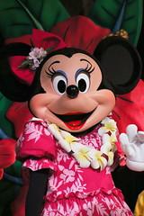 Lilo's Luau & Fun (sidonald) Tags: tokyo disney minnie minniemouse tokyodisneyland tdl tdr tokyodisneyresort ディズニーランド ミニー lunchshow luaufun ランチショー