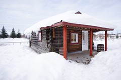 Serious winter // Snow Winter Cold Temperature Architecture Building Exterior Built Structure White Color House No People Outdoors Day Sky Nature Tree at City of Fairbanks (spieri_sf) Tags: snow winter coldtemperature architecture buildingexterior builtstructure whitecolor house nopeople outdoors day sky nature tree