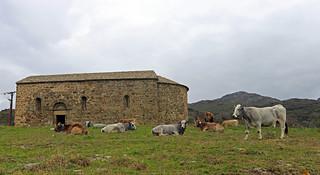Empordà_1065