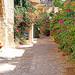 Israel-04708 - Side Street
