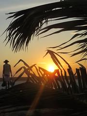 fim de tarde (Mar.tins) Tags: corumbau bahia brazil brasil beleza natural natureza praia cores azul paraíso nordeste barco mangue america do sul south palm tree beach beautiful nature atlantico mar caraívas man pescador fisher shadow outline caraíva