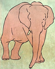 elephant (Illustrations) (Lea- Marie) Tags: elephant animal illustration photoshop project lion conservation adobe illustrator cubs chimpanzee experimentation techniques layering