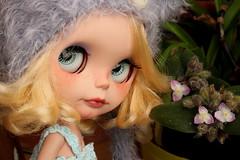 Penny (Meigaland) Tags: hat by eyes ooak blogged blythe prima dolly gaze takara encore cutom saffy correction mimsy sleepey meigaland