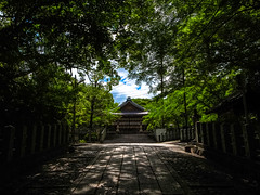 (Shibazo) Tags: kyoto shrine  muko