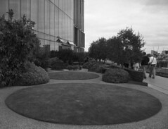 Round and round the garden.... (blueP739) Tags: bw london clouds garden ipc scanner olympus peony londonskyline om4 om2n om1n om2sp om3ti plustek7200 bluefinbuilding aculux3 kentmere100