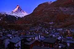 Good Morning Zermatt (baddoguy) Tags: morning autumn light sky sun mountain snow pinetree forest sunrise golden switzerland europe village landmark icon foliage clear gornergrat destination zermatt matterhorn iconic
