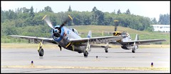 """Republic P-47D Thunderbolt """"Tallahassee Lassie"""" and North American P-51D Mustang """"Upupa Epops"""" (c0yote) Tags: canon republic wwii jug mustang upupaepops warbird everett thunderbolt p51 p51d p47 northamerican fhc p47d painefield kpae flyingheritagecollection flyinghistory tallahasseelassie n723fh 4549406 n7159z 4472364 tamronsp70300mmf456divcusd"""