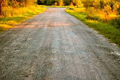 Country Road (A Great Capture) Tags: road trees light ontario canada hub golden evening village sundown dusk country cottage dirt homeawayfromhome on bobcaygeon kawarthas kawarthalakes ald cityofkawarthalakes ash2276 ashleyduffus