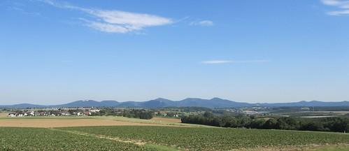 Wachtberg - Berkum Spätsommertag mit Siebengebirge