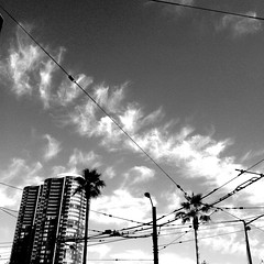 Two Steps To The Left (Jeremy Brooks) Tags: sanfrancisco california trees blackandwhite bw usa building clouds blackwhite palmtrees wires iphone sanfranciscocounty hueless