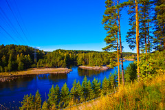 IMG_4240 (smileali) Tags: blue sky tree green nature water colors canon sweden 5dmarkii