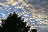 Amazing Sunset (DaveJC90) Tags: camera blue light sunset shadow sky cloud sun sunlight colour detail tree slr digital sunrise dark early suffolk amazing nikon colours afternoon bright cloudy sunny sharp crop shape croped sharpness d5100 blinkagain