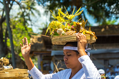 Classy (Arnaumb) Tags: travel flowers people bali white color colour men beach indonesia 50mm community women dress religion pray ceremony hats traditions blessing ritual mf nikkor hindu ai offerings d600 galungan earthasia