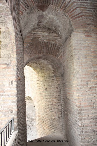 2013 Porta Appia Camminamento xf