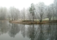 Stilla at Akerselva (The Aker River), Oslo (bjorbrei) Tags: trees winter mist water oslo norway fog reflections stream frost day akerselva stilla pwwinter