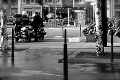 Ecorces (Glaneuse) Tags: park street city trees light bike fog blackwhite cops police motorcycle birch policemen