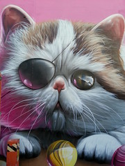 Smug...Fitzroy, Melbourne... (colourourcity) Tags: streetart streetartmelbourne graffiti pink awesome colourourcity melbournegraffiti graffitimelbourne graff art burncity smug smugone mural pussy cat