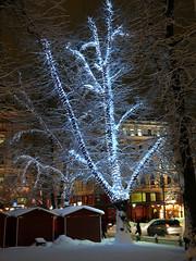 19th DEC | Tree of Light (Toni Kaarttinen) Tags: christmas xmas winter holiday snow ice night suomi finland season lights helsinki finnland december advent market snowy cottage christmasmarket hut esplanade yule helsingfors adventcalendar finlandia holidayseason フィンランド esplanadi finlande finlândia finnország finlanda finlàndia финляндия finnlando فنلندا