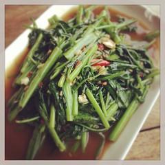 #ผัดผักบุ้งไฟแดง #food #thai #thaifood #eat