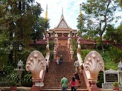 Naga Steps