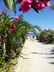 Otok Susak, Mali Losinj (sandra86sandra) Tags: island croatia adriatic susak adria hrvatska malilosinj malilošinj lošinj