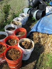 Buckets of subsoil_4630875318_l