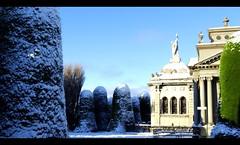 Snow Dream Punta arenas (jgarciagalvez) Tags: blue trees cemeteries snow grave graveyard sunny panoramic graves angels