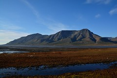 Adventfjorden with Hjorthfjellet (DaniNot) Tags: summer svalbard arctic tundra adventdalen hjorthfjellet longyearbyen