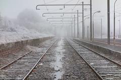 Winter in Eastern France (Añelo de la Krotsche) Tags: winterineasternfrance winter hiver easternfrance moselle lorraine gel