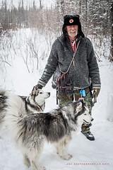 Wes...Russian Federation Canis Ranger (DGC Photography.ca) Tags: dogs dogpark dogwalker malamutecross malamute russianfederation snow wolfdogs dougcallow dgcphotographyca calgary alberta canada winter