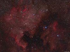 The North America and Pelican Nebulae (Martin_Heigan) Tags: northamericanebula ngc7000 caldwell20 cygnusswall hydrogen ha hargb narrowband astronomy astrophysics astrograph telescope martin heigan astrophotography nebula deepsky dso space science physics mhastrophoto september2016 southafrica sgp williamoptics star71 apo refractor stars canon60da wo celestronavx platesolving mosaic widefield alphacygni flickrexplore explore amateurastronomy astroimaging halpha hydrogenalpha cygnus deneb emissionnebula nebulae supergiant a21aspectralclass αcygni glowinghydrogen dustangas astrometrydotnet:id=nova1985536 astrometrydotnet:status=solved ngc6996 ngc6989 57cyg 56cyg ngc6997 ic5070 mheiganmostviewedphotos