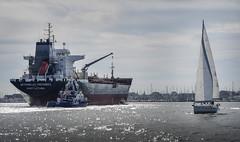 A bientôt (robinlemenn) Tags: bretagne boat seq arbor sea ocean morbhian lorient