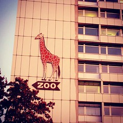 #berlin (mcloughm) Tags: berlin germany zoo crossprocessed flickrandroidapp:filter=none fujix20