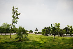Nature and History in South Korea (Greg - AdventuresofaGoodMan.com) Tags: building nature wall temple pagoda ancient korea seoul southkorea gyeongbokgungpalace nationalfolkmuseum greggoodman lostinkorea