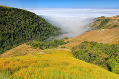 The Pacific Coast in a Sea of Fog (Dave Toussaint (www.photographersnature.com)) Tags: ocean california county ca travel sea usa nature water june fog photoshop canon landscape 1 coast photo monterey interestingness big google interesting day photographer central scenic picture clarity hwy clear explore route pch adobe sur route1 adjust infocus pacificcoasthighway 2011 lospadresnationa