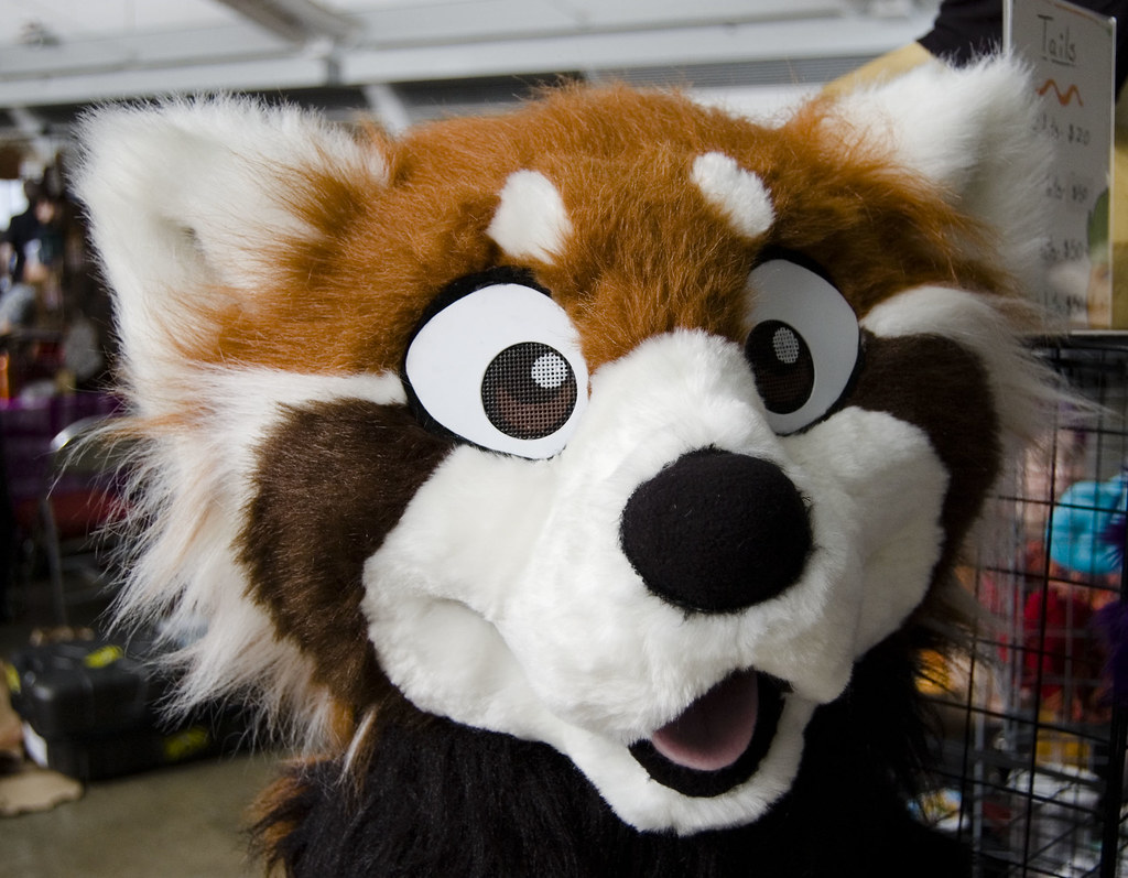 Fursuit Panda the world's newest photos of furry and gel - flickr hive mind