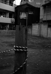 CT20130720_38_TriX400 (21) (hiro.nk) Tags: blackandwhite bw white black film japan zeiss tokyo aperture shinjuku kodak iso400 trix shibuya 400tx contax carl f28 t2 sonnar 38mm tx400 plustek opticfilm 8200i