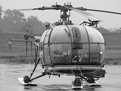 Alauda arvensis (ricardo 31) Tags: blackandwhite plane airport noiretblanc airplanes helicopter planes toulouse blagnac spotting tls avions helicoptere planespotting aéroport spotters spotter aéronautique alouetteiii lfbo sa316 alouette3 aircratfs fmjbw
