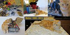 Walter (Imagine) Tags: walter silly building cat memorial lego library bricks cthulhu stinky kitcat fuzzybutt orangeboy masseffect bioshock felinefriend imaginerigney brownpaw thewaltman