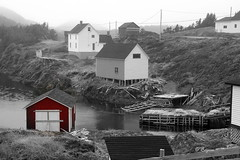 Herring Neck (RockyWaters2012) Tags: world new autumn house canada water fog port newfoundland neck islands bay wooden spring fishing harbour cove stage foggy scenic wharf tranquil herring