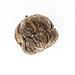 Artisan Flowering Balls