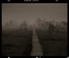 Tracking through Haze (t