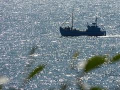 P1040260 (aishe's photography) Tags: sea sky water germany island deutschland meer wasser baltic insel rgen ostsee vorpommern mecklenburg