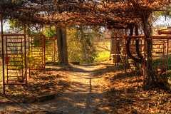 Following Frank's Path (The Cleveland Kid) Tags: autumn trees taliesin fall wisconsin franklloydwright fencing archway wi pathway organicarchitecture springgreen wrightarchitecture