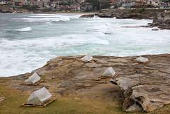 tents bondi sculpture by the sea 2013_3836 (gervo1865_2 - LJ Gervasoni) Tags: sea sculpture art bondi by landscape culture australia nsw tamarama artscape 2013 photographerljgervasoni