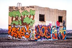 Colored (Thomas Hawk) Tags: usa abandoned graffiti unitedstates michigan unitedstatesofamerica detroit boblo waynecounty boblodocks boblodockbuilding bobloislanddetroitdockbuilding